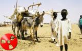 Sulle precedenti elezioni sudanesi cala l'accusa di brogli.