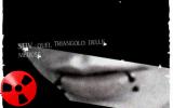 Nuovo lavoro discografico di STIV, in uscita il 7 Maggio