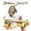 Running on Jah Way il primo disco di  Stalloman aka JuniorV