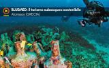 BLUEMED: il turismo subacqueo sostenibile